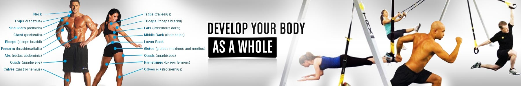 Online Fitness plans and Weight loss program